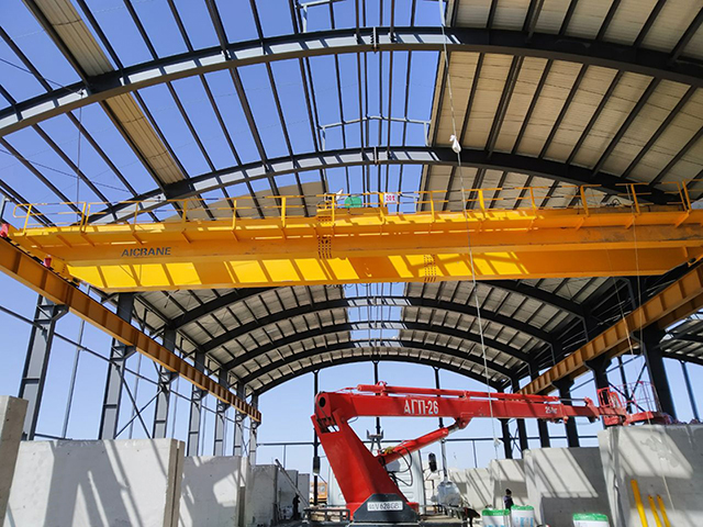 30ton eot crane supplier